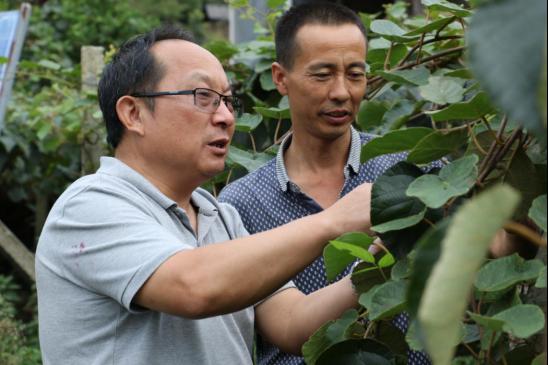 为乡村振兴赋能 湖南探出科技精准扶贫好路子