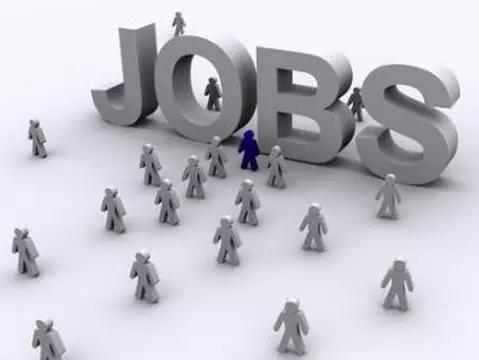 提升效能强服务,深化改革促就业