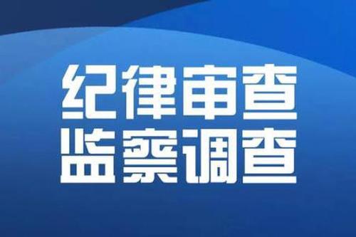 郴州市发展投资集团原董事、副总经理刘尧利接受审查调查