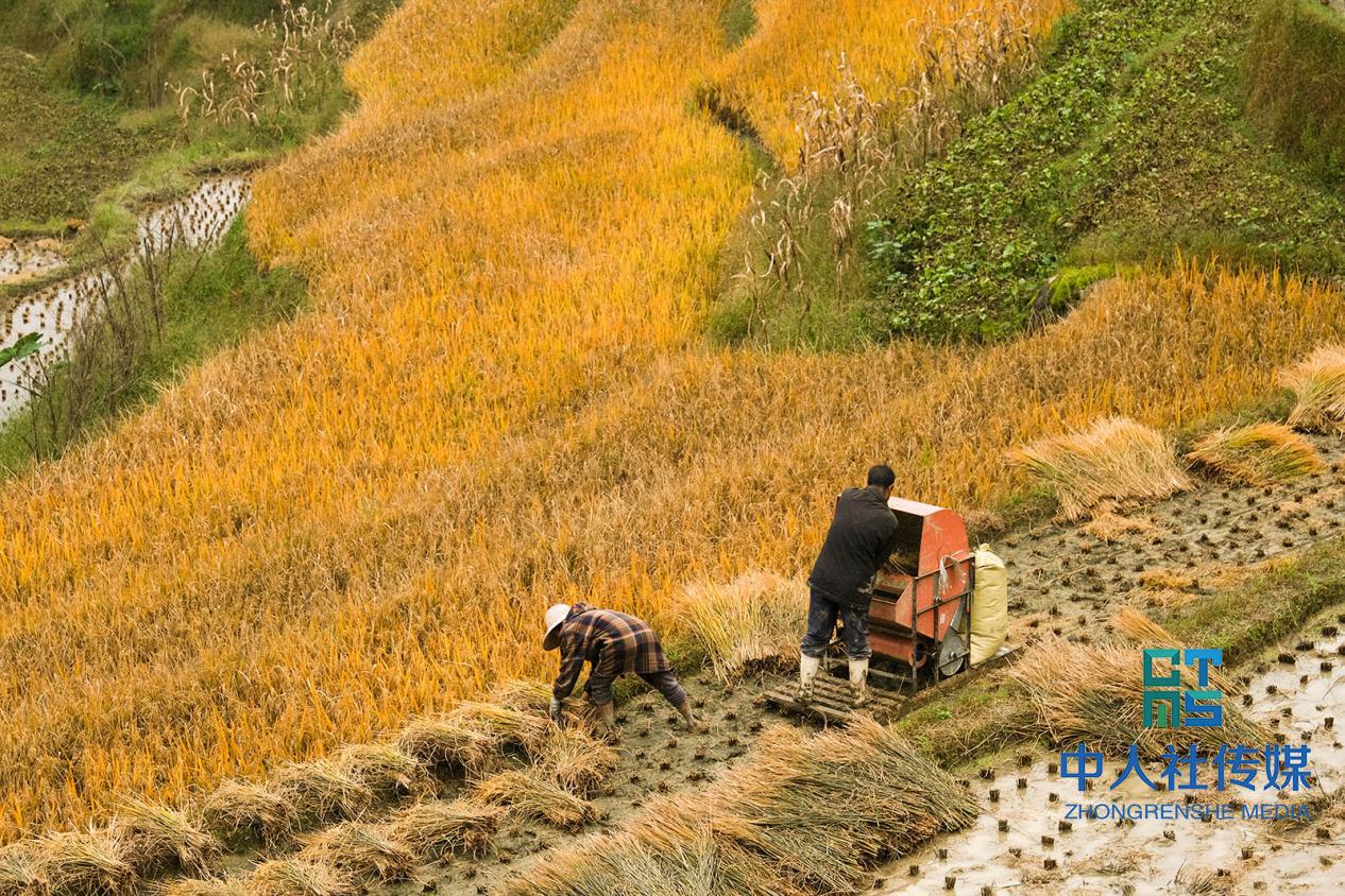 新化荆竹村:就业扶贫托起村民稳稳的幸福